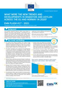 thumbnail of EMN ARM 2020_FLASH